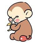 猿五郎@チョロQ ( Pao_n1093 )