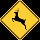 Road Sign Shop ( Road )