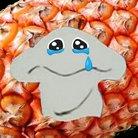サルパリ ( sarsaparilllla )