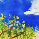 art-mimösa ( art-mimosa )