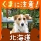 パン ( pan_maro )