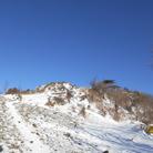 赤い寝魚 ( Mt_akaturi )