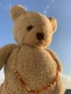 Kuma Bear ( KumaBear )
