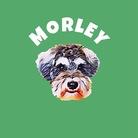 MORLEY'S  モーリーズ ( morleys )