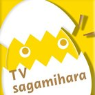 🍳テレビさがみはら【公式】🥚 商店街テイクアウト動画制作支援始めました ( tvsagamihara )