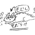 いけだ ( IkanaGo__03 )