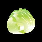 lattuga-sfera