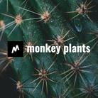 monkey plants ( monkey-plants )