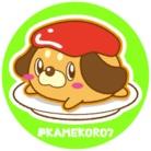 かめころギャラリー ( kamekoro_2020 )