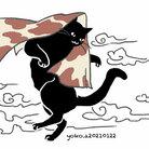 猫柳 ( nora-yoko )