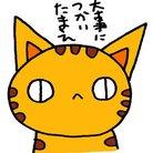 (猫)滝川商会 ( NEKOZU )