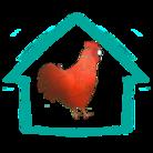 ✨キラキラの地鶏✨ ( runa260903 )