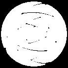 白薔薇 ( mtaka28 )