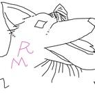 ラルフマロン ( RALUPHMARON )