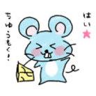 ピカまるショップ ( Pikagorou777 )