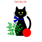 catdaylife. ( catdaylife )