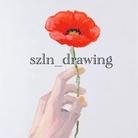 szln_drawing