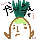 ダイコン ( Daikon0608 )