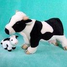 ♪ 牛のひと。 ( takeyafarm )