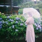 はせ ( hasu__ax2 )
