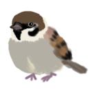 isay-t(文鳥/雀/蛙など) ( isay-t )