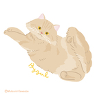kawamu_cats shop