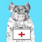 長生きしたくないネズミ(´ω`) ( 3c2E9XC8L2sxh7M )