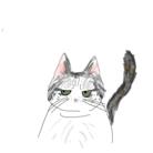 丸太猫 ( maruta_cat )