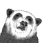 Rix@理性を持つパンダ ( jinndia )