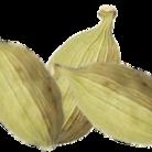 イシトビキャベツ ( cabbagevideo )