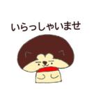 しい太のお店 ( kino-comachi )