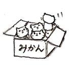 むつ@入国 ( mutsu411 )