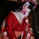 花かんざしのまるやま ( 87kanzasi )