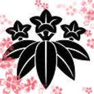 和彩彩きーこ ( wasaisai )