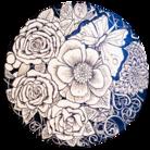 Ashcolor 3 ( Ash_flower )