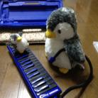 池田善哉 ( Ysy_penguin )