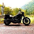 I'm SATOKO@Harley-Davidson ( ImSATOKOHarley1 )