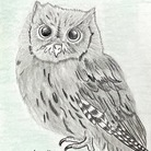 OWLs ( primrose )
