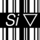 45_____ ( Si )