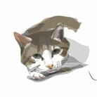 毎日猫さん犬さん ( H_design )