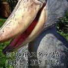 後方支援忍者ハシビロ4/16古河 ( mugi071344 )