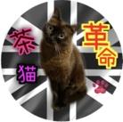 茶猫革命〜トンちゃんショップ〜 ( tonchannel )