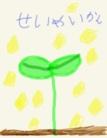 しぜんのグッズ ( shizen_bond )