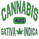 No.420 ( No_420 )