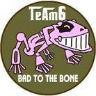 チームシックス ( TeAm6 )