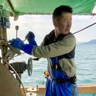 瀬戸内海の漁師まさと ( mst222 )