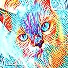 Fire_Cat ( fire_cat )