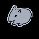 ぽこ(ハムスター ) ( POKO_hamster )