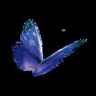 InDesign20周年イベント記念グッズ ( YUJI_id )