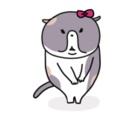 うちのネコ ( sat0mi871 )